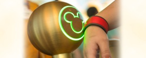 Mickey to Mickey